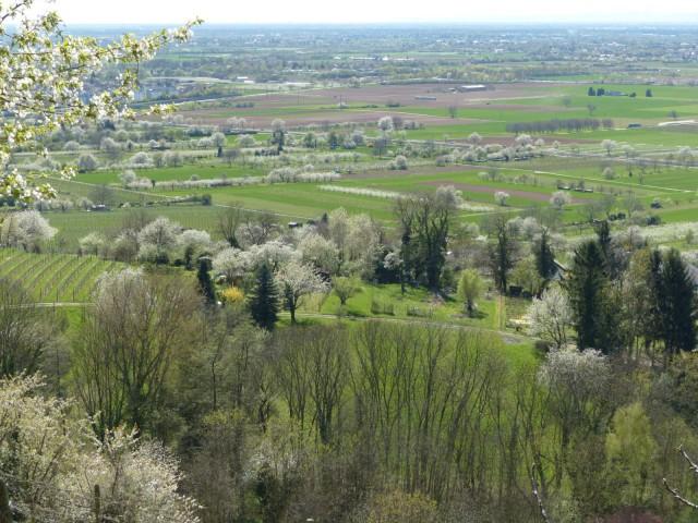 P1010559 Blick von Blütenweg bei Leutershausen 1600